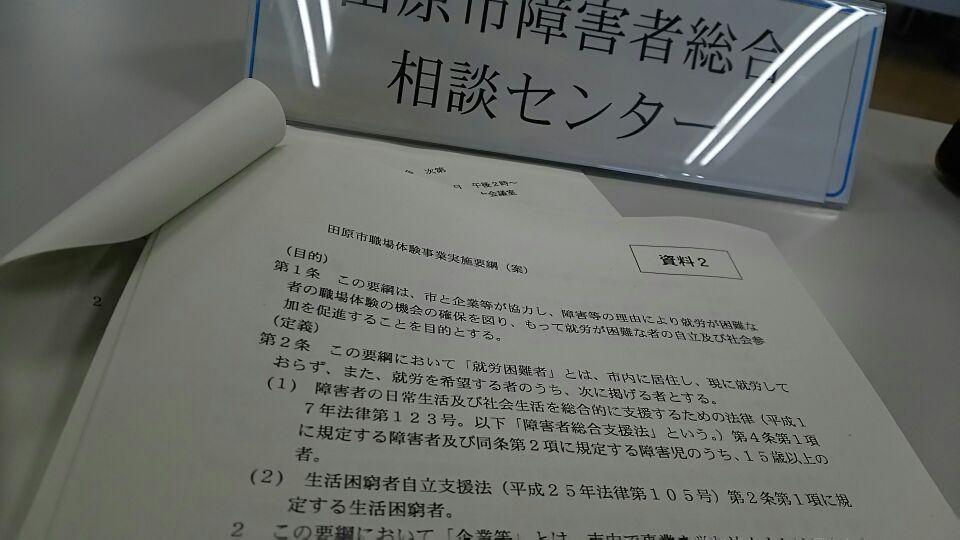 要綱(案)