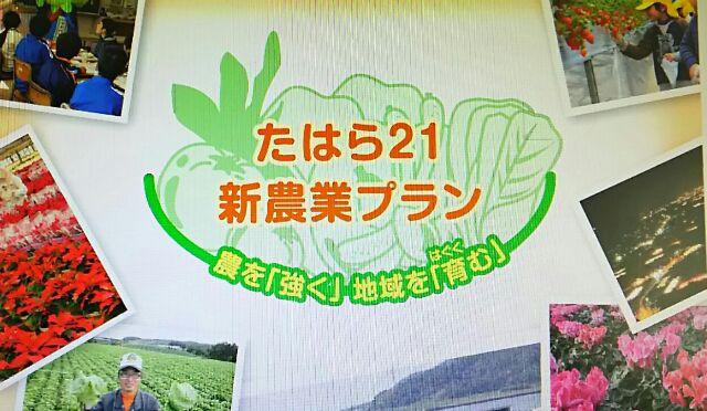 たはら21  新農業プラン